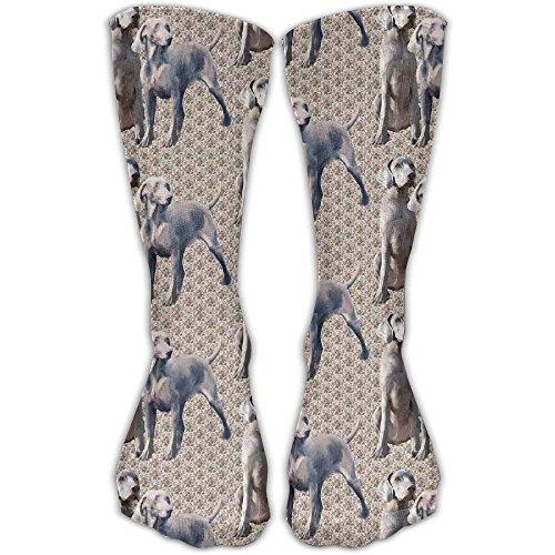 Dog Weimaraners Comfortable Graduated Compression Socks For Women And Men,Athletic Socks Weimaraner-baseball-cap