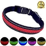 MASBRILL Leuchthalsband für Hunde aufladbar LED hundehalsband Blinkende Lichter mit USB verstellbar 3 Modells (M, Rot)