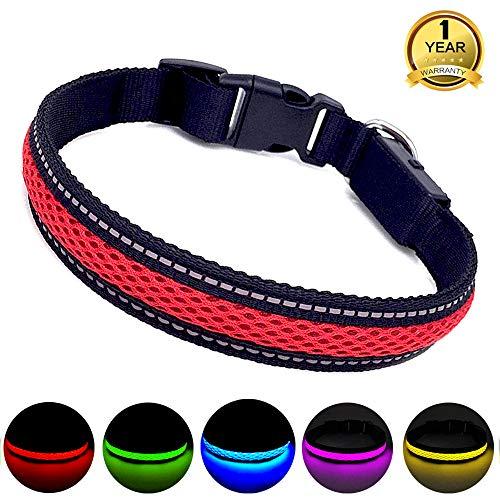 MASBRILL Leuchthalsband für Hunde aufladbar LED hundehalsband Blinkende Lichter mit USB verstellbar 3 Modells (M, Rot) -