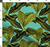 Leinen, Palme, Blätter, Tropisch, Türkis, Botanisch