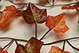 Best Artificial (TM) 210cm / 7ft Ivy Garland Hanging Vine String Plant (Two Tone Autumn English - IL15)