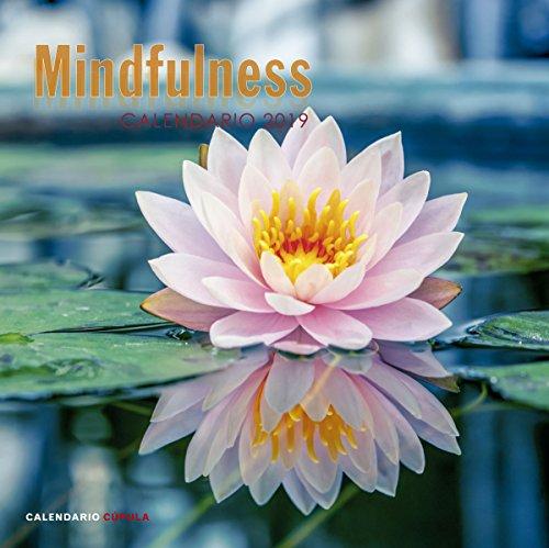 Calendario Mindfulness 2019 (Calendarios y agendas)