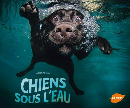 Chiens sous l'eau par Seth Casteel