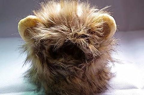 Costume de lion pour animal avec perruque et oreilles