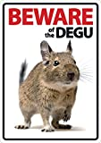 Magnet & Steel Beware of the Degu A5 Schild