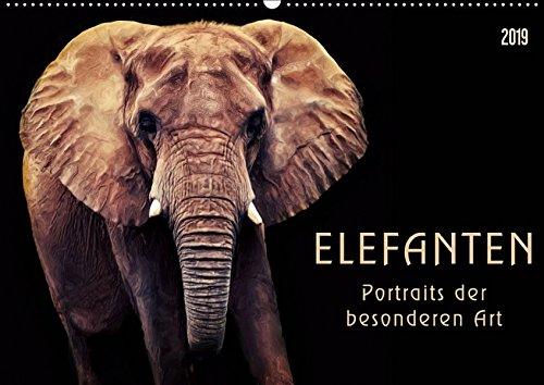 Elefanten - Portraits der besonderen Art (Wandkalender 2019 DIN A2 quer): Wunderbare...