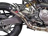 DUCATI MONSTER 821/1200 Euro4 Titan RACING Schalldämpfer