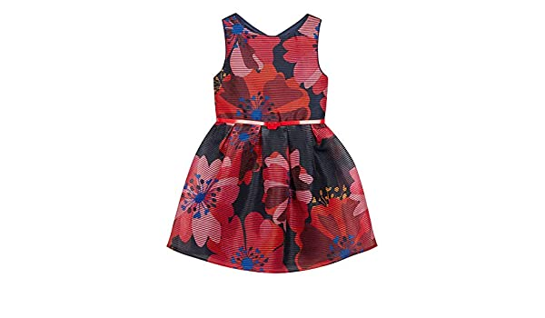 85e27d7354e4 Debenhams J by Jasper Conran Kids Girls' Multicoloured Floral Print Burnout  Dress: J by Jasper Conran: Amazon.co.uk: Clothing