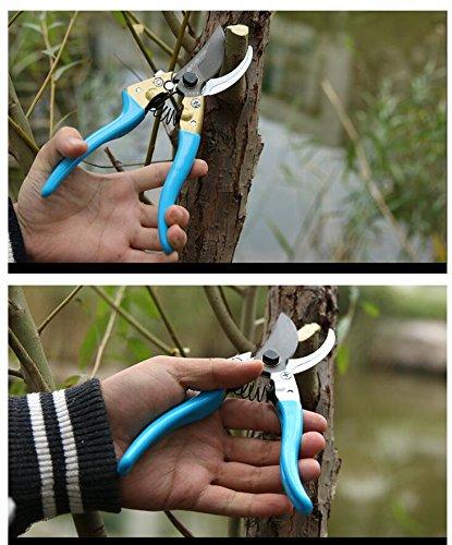 Luckc Gartenschere Baumschere für hartes Holz, Rosen- Strauchschnitt, Amboss-Gartenschere spart Kraft, Handgelenk und Arm Werden geschont. Für Linkshänder und Rechtshänder