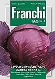 Rotkohl Cabeza Negra 3 von Franchi Sementi