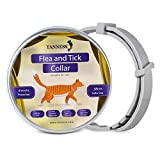 "Tanness Flea and Tick Collar for Large and Small Dogs 15"" Hypoallergenic"