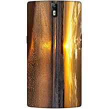 Timpax protective Armor Hard Bumper Back Case Cover. Multicolor printed on 3 Dimensional case with latest & finest graphic design art. Compatible with One Plus One ( 1+1 ) Design No : TDZ-24910
