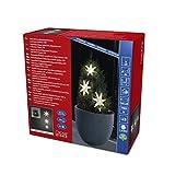 Konstsmide 6133-103 LED Lichtervorhang, 3 Acryl Sterne/für Außen (IP44) / 6h Timer / 245 warm weiße Dioden/Batteriebetrieben: 4 x AA 1.5V (exkl.) / transparentes Kabel