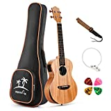 Best Ukulele di concerti - Donner 23 pollice Ukulele Concerto in solido legno Review