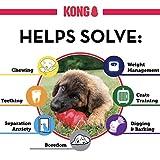 Kong Hundespielzeug L, 10,5 cm rot - 6