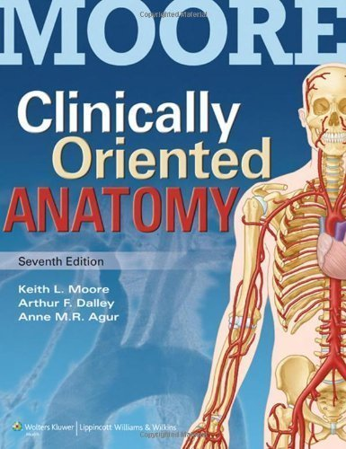 clinically-oriented-anatomy-by-moore-phd-fiac-frsm-faaa-keith-l-published-by-lippincott-williams-wil