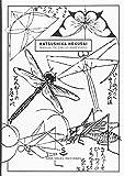 Manual de dibujo abreviado (Wunderkammer)