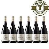 Rotwein Frankreich Nos Racines Merlot trocken 2015 (6x0,75L) - VERSANDKOSTENFREI