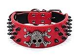 2 Zoll Breite schwarz Spiked Skull Hundehalsband besetzte PU Leder Punk Style Halsbänder für mittlere große Hunde Pitbull Boxer Mastiff (56-66cm) (Neck(16.92