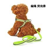 dfyjrikmp Hund Zugseil reflektierende Hund Kette Kleiner Hund Haustier Brustgurt Hundeleine Haustier SeilFlachseil grünL(8-18 kg)