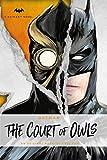 DC Comics novels - Batman: The Court of Owls: An Original Novel by Greg Cox (English Edition)