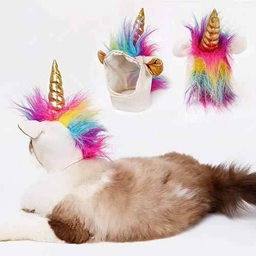 loween Day Cat Pet Einzigartige Kopfbedeckungen Dekoration Puppy Accessoire Cosplay Hat ()