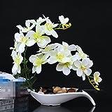SYHOME Plantes artificielles fleurs orchidée faux créatifs Kit Decorationation Table minimaliste orchidée blanche