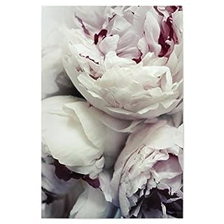artboxONE Poster 60x40 cm Floral Pfingstrosen Hochwertiger Design Kunstdruck - Bild Floral von Amy&Kurt