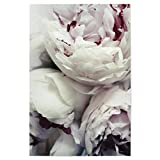 artboxONE Poster 90x60 cm Floral Pfingstrosen Hochwertiger Design Kunstdruck - Bild Floral von Amy&Kurt