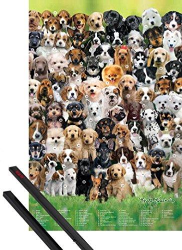 pster-soporte-perros-pster-91x61-cm-various-breeds-keith-kimberlin-y-1-lote-de-2-varillas-negras-1ar
