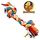 #1: Foodie Puppies Durable Dog Chew Rope Toy for Small to Medium Dogs - Interactive Teething Rope Toy to Play with (Color May Vary)