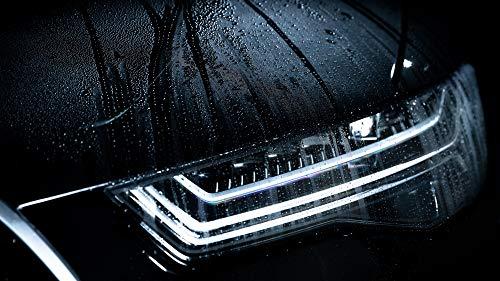 Nanolex Pure Shampoo 750 ml, hocheffektives aber mildes Autoshampoo, ph neutrale, phosphatfreie Autoreinigung & Autopflege