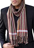Best George Mens Jackets - Men's George Modern Multicolor Stripe Fashion Scarf (Brown) Review