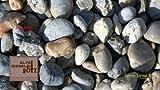 Zierkies Flusskiesel Bunt 32 - 63 mm a 25 kg