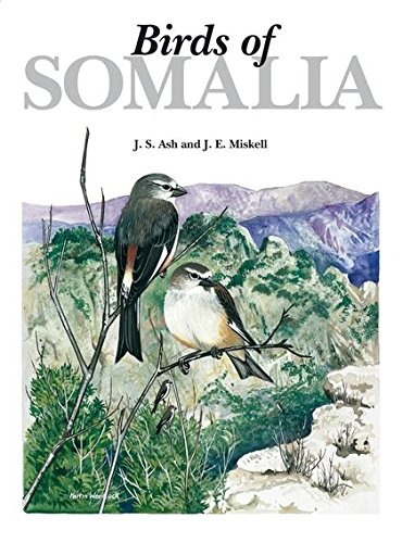 Birds of Somalia Ash Helm