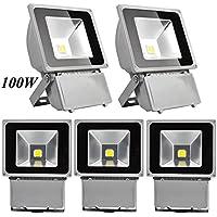 Leetop 5X 100W Foco LED Proyector de Luz Lámpara IP65 Impermeable Iluminación Exterior del Jardín al Aire Libre,Patio,Terraza. Bajo Consumo de Energía y Alto Brillo Blanco Frío 220V