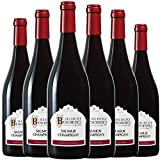 ALBERT BESOMBES Saumur Champigny Vin Rouge Sec AOP 2016 75 cl - Lot de 6
