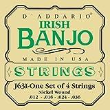 D'Addario J63i Saitensatz für Banjo 5-String und Tenor Tenor Banjo-Irish/Nickel
