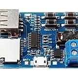 DZXGJ® amplificador módulo de placa decodificador tarjeta U disco mp3 formato de decodificación de reproductor de audio