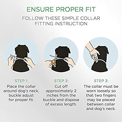 EXPETSO Flea and Tick collar for Dog Cat 8 Months Effective Protection adjustable length 60cm for Small Medium Large Pets BLUE from EXPETSO