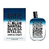 Comme des Garcons Blue Santal unisex, Eau de Parfum, Vaporisateur / Spray 100 ml, 1er Pack (1 x 100 ml)