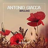 Birdland (Original Mix)