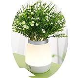 Raylans Veilleuse LED USB Rechargeable en Vase avec Fleur artificielle Lampe de Chevet Déco Ambiance Chambre à Coucher Soirée Cadeau Anniversaire