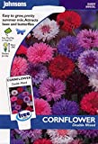 johnsons seeds - Pictorial Pack - Fiore - Fiordaliso Double Mix - 300 Semi