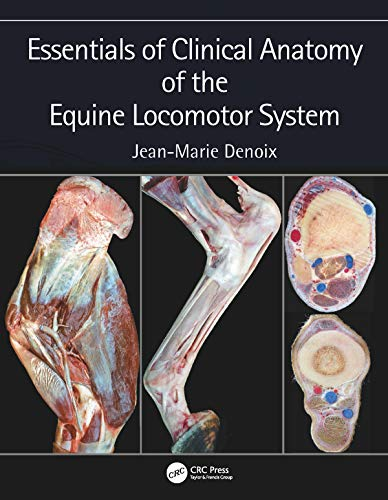 Essentials of Clinical Anatomy of the Equine Locomotor System (English Edition) -