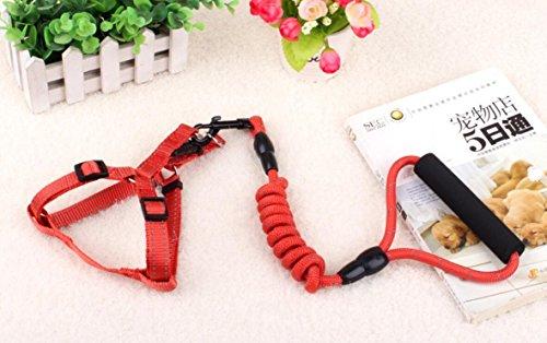 SUxian Hundeleine Brustgurt Reflektierende Nylon Schwamm Griff Hund Kette (Rot)
