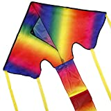 Anpro Colorful Kite for Kids and Adults - Best Reviews Guide