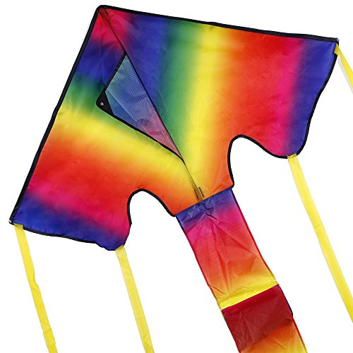Anpro Colorful Kite for Kids and Adults - Huge
