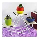 ZHANWEI Gartenregal Blumenregal Eisenkunst Multi-Tier Mini Desktop Regal Multifunktion Innen- Bodenständig Gestell (Farbe : Weiß, größe : 38X9X25CM)
