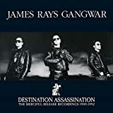 Destination Assassination By James Rays Gangwar (2015-07-31)